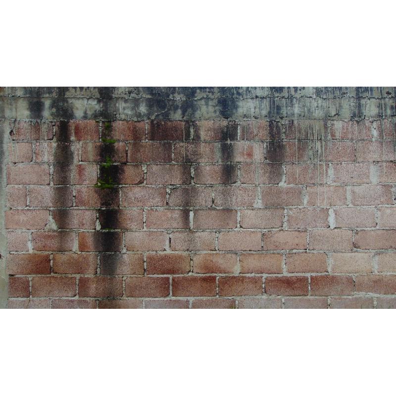 Osuszanie ścian po zalaniu